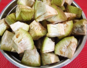 Chopped Jackfruit Pieces